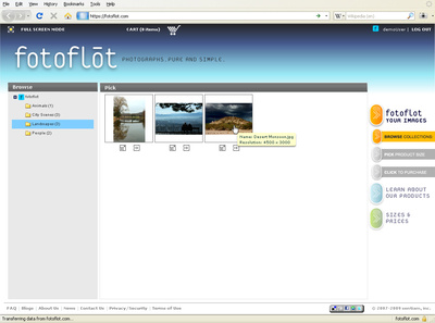 fotoflot.com pick image screen